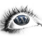 Wordpress Development Secrets